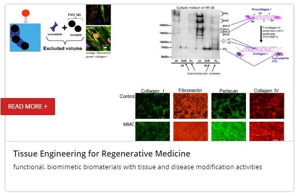 Tissue Engineering for Regenerative Medicine