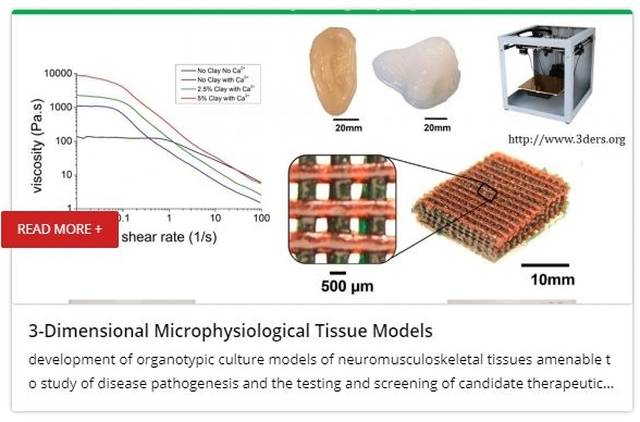 3-Dimensional Microphysiological Tissue Models